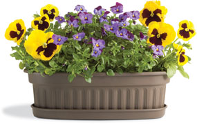 Botanica Collection of pots for container gardens, planters, patios and house plants.